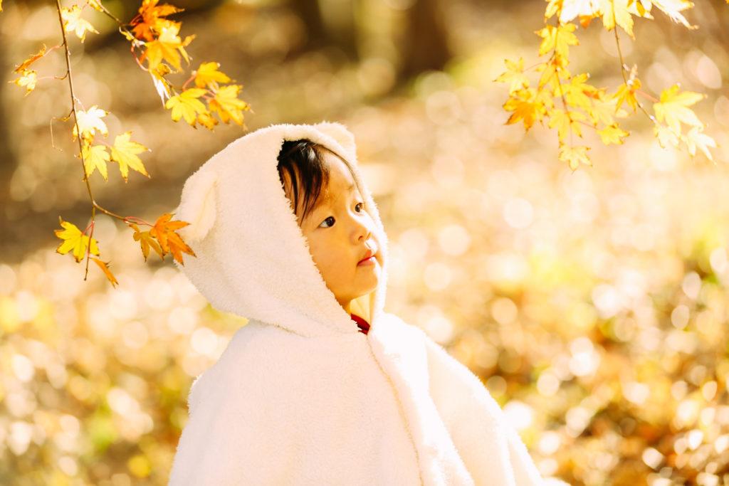 秋の紅葉撮影会のお知らせ♪~満員御礼~